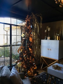 Client Tree in their new Home Office