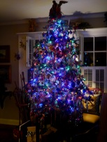 The tree at Little Downton