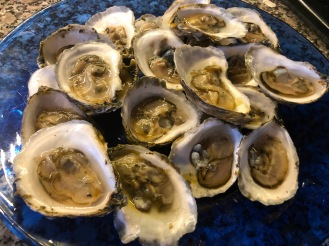 Damriscotta River Oysters